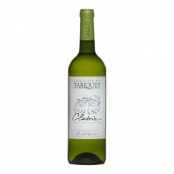 Magnum Château Tariquet Côtes de Gascogne Vin de pays Classic 150cl